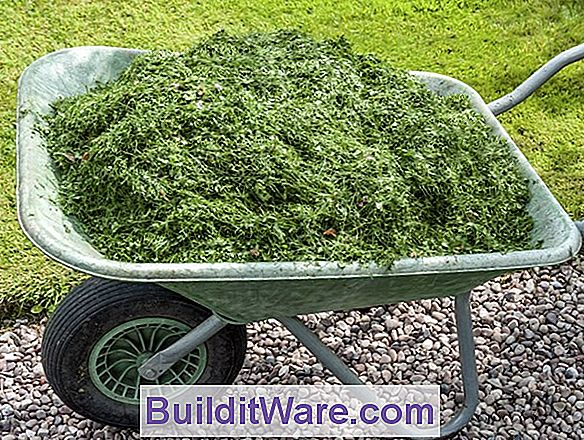 Grass Clippings - Mulch