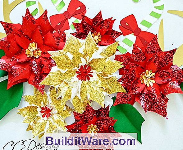Poinsettia - Cut Flowers